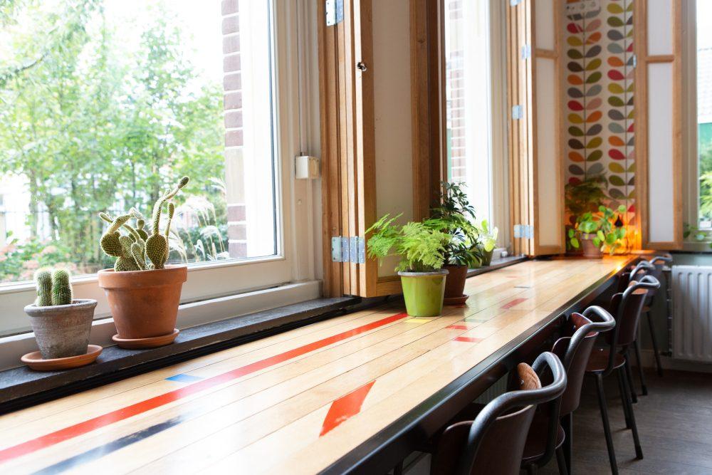 Lange tafel aan het raam in de foyer met planten en cactussen